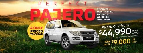 perfect-pajero